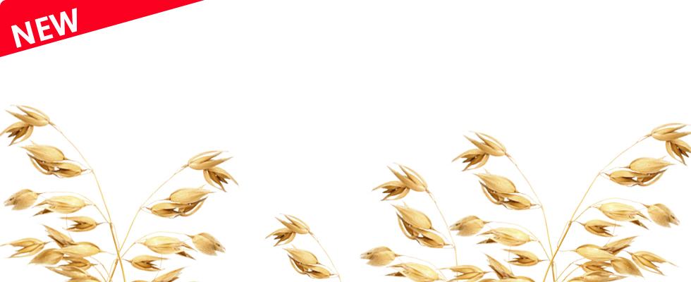 1_Getreide